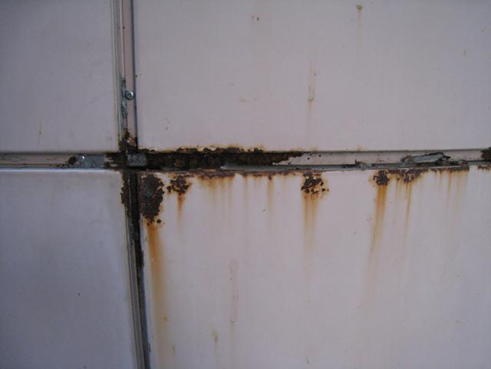 沼津外壁塗装前